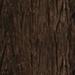 bark.jpg